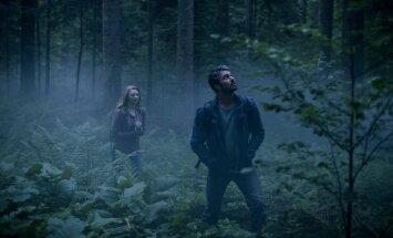 Demonų miškas