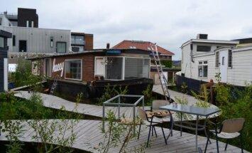 De Cueve projektas Amsterdame
