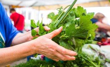 Sveikos mitybos vokiečius mokanti L. Krause: kalorijų skaičiuoti nebūtina