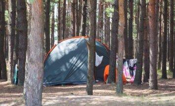 Palapinė miške