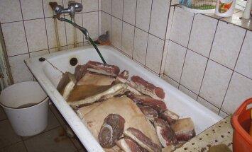 Nelegalus mėsos cechas Alytuje