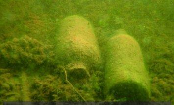 Zaraso ežero dugnas / O. Pauliukovo nuotr.