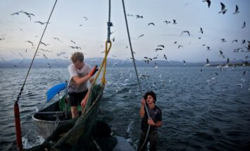 Galilėjos jūra