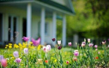 Ar reikia leidimo namui sodininkų bendrijoje statyti?
