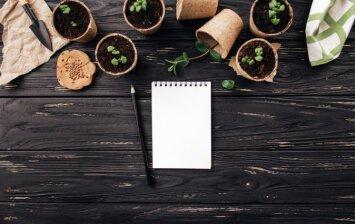 Balandžio mėnuo darže bei sode: kokie darbai laukia?