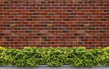 Druskų nuosėdos: kaip apsaugoti plytų sieną