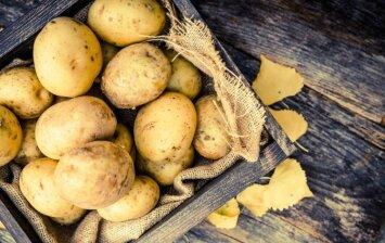 Kaip laikyti bulves, kad ilgiau išliktų sveikos?