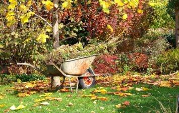 5 sodo ir daržo darbai, kurių negalite pamirštį šį rudenį