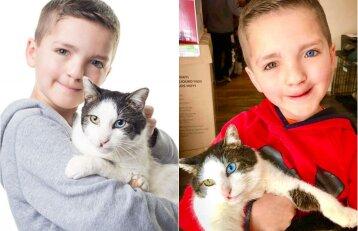 Draugystė, prilygstanti stebuklui: berniukas ir katinas – lyg du vandens lašai