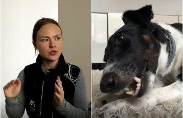 Vilnietė negalėjo susitvarkyti su kaukiančiu šunimi: atvykusi dresuotoja greit rado sprendimą
