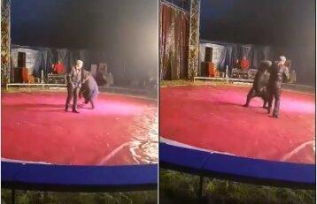 Iš cirko pasirodymo vaikai išėjo verkdami: nufilmavo, kaip žiauriai elgiamasi su gyvūnais
