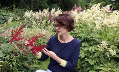 """""""Geltonas karutis"""": šiųmetės sodo mados – vienmetės ir daugiametės, savaime pasisėjančios ar """"senovinės"""" gėlės"""