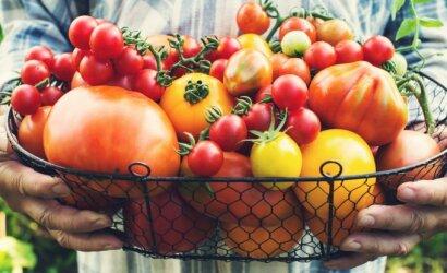 Artėjantis pavasaris keičia ir maisto racioną: kokių daržovių lietuviai labiausiai pasiilgo?