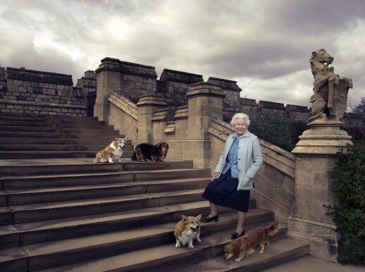 Karalienė Elizabeth su savo šunimis