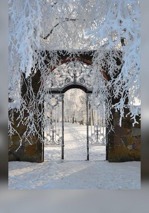 """Pakruojo dvare - pirmasis Lietuvoje ledo skulptūrų ir šviesos festivalis """"Pasaka"""""""