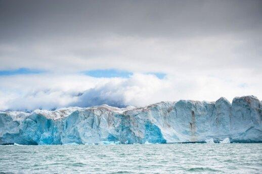 Kongsbreeno ledynas, matomas nuo Ny-Alesundo pakrantės