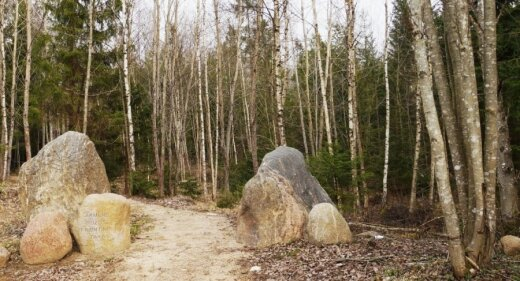 Akmenų rūžos takas