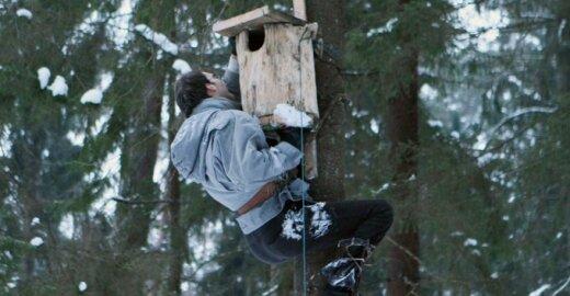 Kauno Panemunės šile iškelti inkilai naminėms pelėdoms