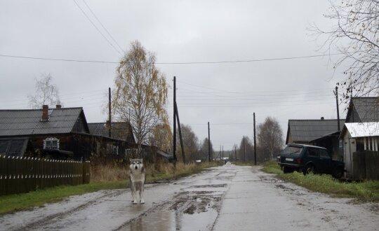 Sovietų palikimas: liga, kuri pražudo tūkstančius lietuvių