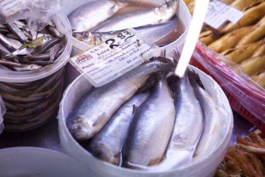 Žuvų platinamos ligos: ką būtina žinoti norint išvengti skaudžių padarinių