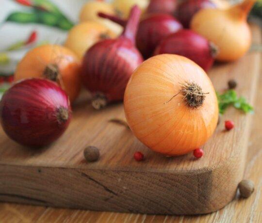Jeigu žinotumėte bent pusę svogūnų lukštų savybių, niekada jų neišmestumėte