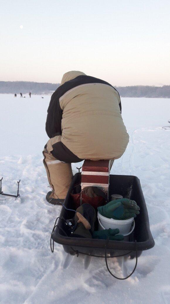 Žvejo rogės