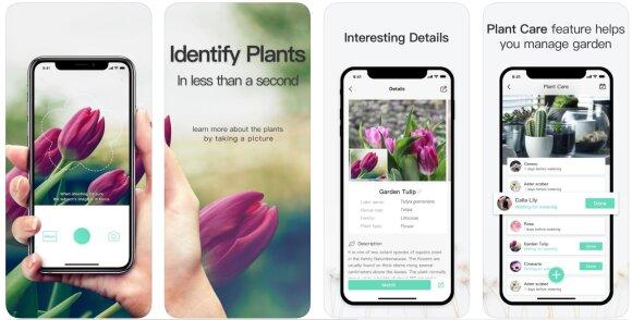 Plantldentifier