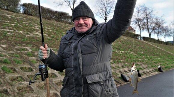 Vietinis Kauno žvejys su pagauta kuoja