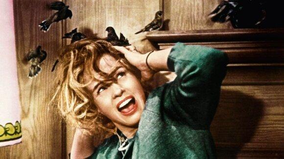 """Filmas """"Paukščiai"""