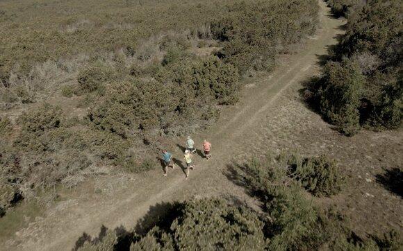 Arno Jurskio bėgimas Nidoje iš paukščio skrydžio