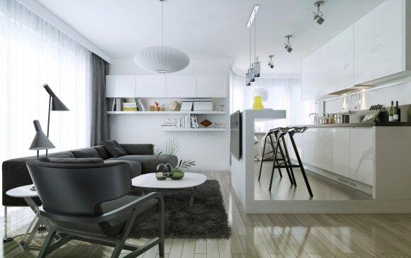 Architekto patarimai, kaip studijos tipo buto erdvę paversti jaukiais namais
