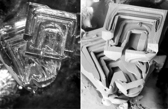 Optiniu ir elektroniniu mikroskopu užfiksuoto ledo kristalo vaizdo palyginimas