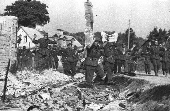 Lietuvių ir lenkų partizanų veikla