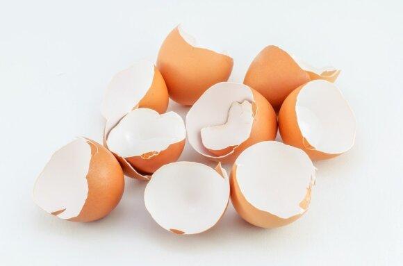 10 praktiškų būdų, kaip panaudoti kiaušinių lukštus