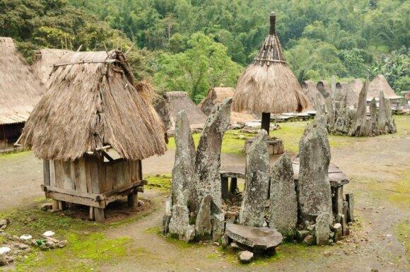 Mitai ir faktai: ar paslaptinga Ebu Gogo gentis iš tiesų egzistavo?