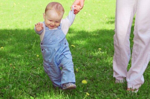 Ką verta žinoti apie vaikštynes