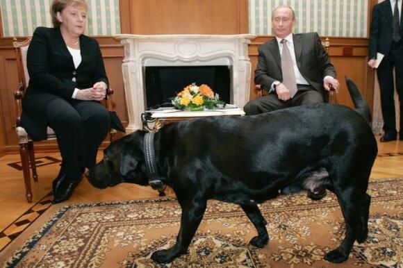 Angela Merkel, Vladimiras Putinas ir jo šuo