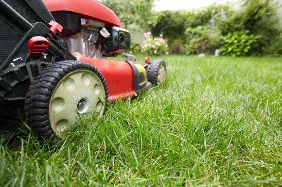 Išmanus sodas – kaip išsirinkti šašlykinę, šviestuvus ir vejos robotą