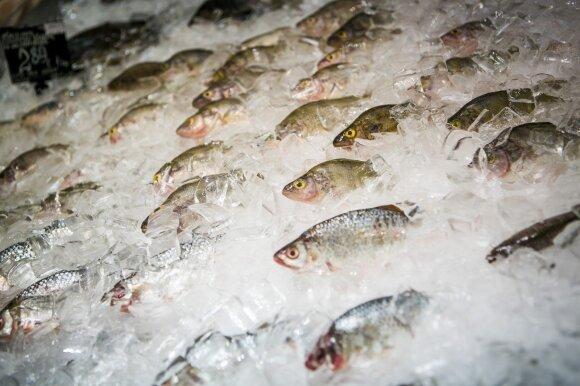 Pokyčiai prekybos tinkluose: atsisakys prieštaringai vertinamų akvariumų