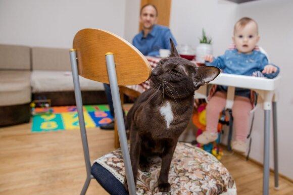Atvirai apie nevaisingumą prabilusios Gintarės namuose aidi vaikiškas juokas