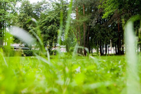 Dėl erkių sukeliamų ligų Vilniaus savivaldybė perspėja ženklais