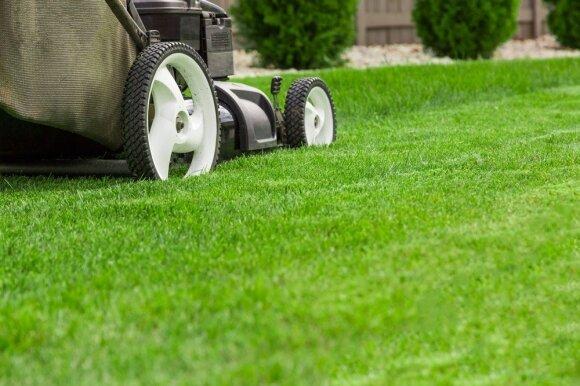 Sergantiems tobulos vejos sindromu: laikas keisti požiūrį!