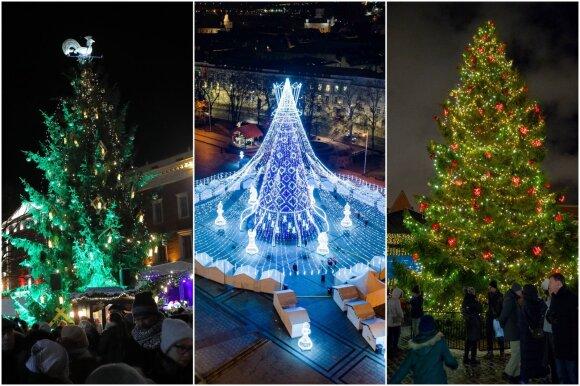 Vilniaus, Rygos ir Talino Kalėdų eglės