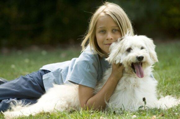 Jei svajojate apie šunį, privalote tai sužinoti