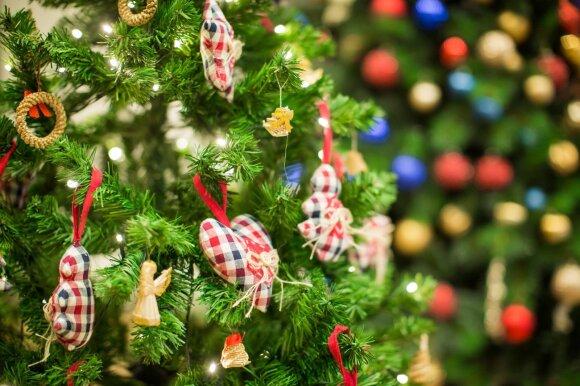 2016 metų Kalėdos – ne tik namiškių, bet ir kaimynų akims paganyti