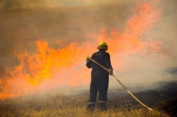 Miškų gaisrų prevencijai išleido milijonus
