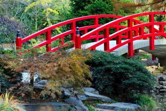 Japoniški sodai: kai kalba akmenys, vanduo ir augalai
