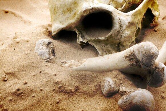 Mirties muziejus