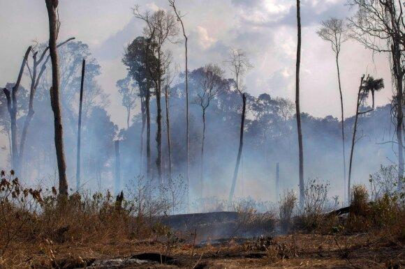 Gaisrai Amazonėje