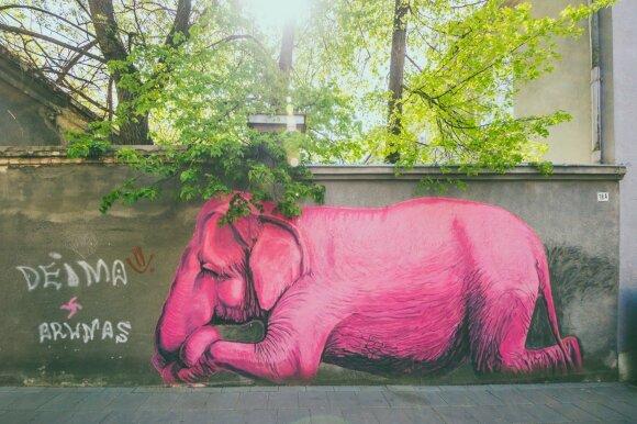 """Rožinis dramblys"" (aut. V. Jakas) , nuotraukos aut. A. Aleksandravičius."